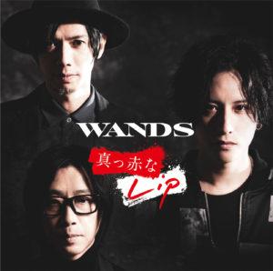 WANDSの画像 p1_30