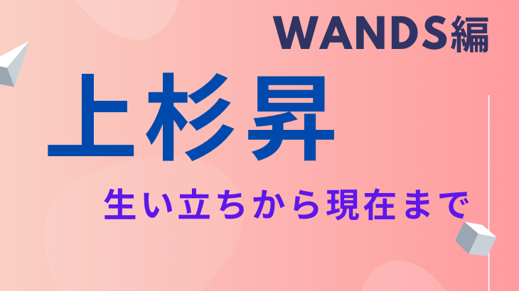 WANDSの画像 p1_9