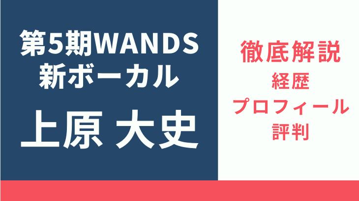 wands-wehara-image