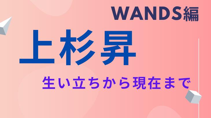 wands-wesugi-story2
